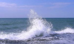 Книжная выставка «Это удивительное море»- миниатюра